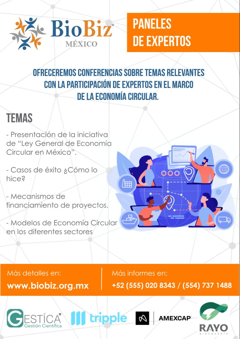 Paneles_Expertos-A3-Flyer